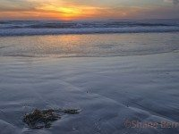 6- Morro Bay Beach