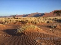 3-Desert  Sand Patterns